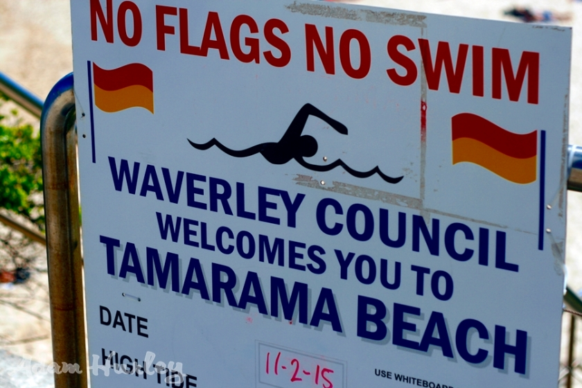 No Flags, No Swim..........read, understand and help the life guards, help you!