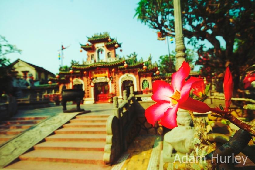 Fukien Assembly Hall Hoi An Vietnam
